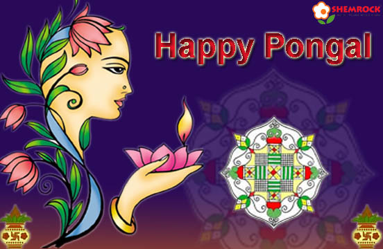 Wallpapers Of Pongal Festival. Send and download Happy Pongal