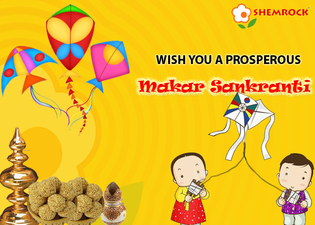 Makar Sankranti festival wallpapers and greetings