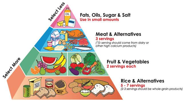 Liquid Diet Food Pyramid